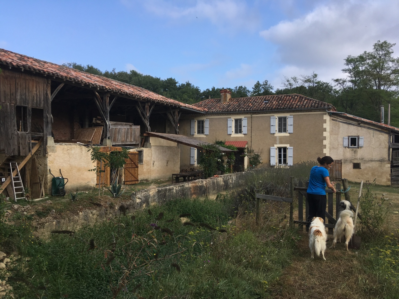 A little slice of animal husbandry heaven in the south of France, byWayne