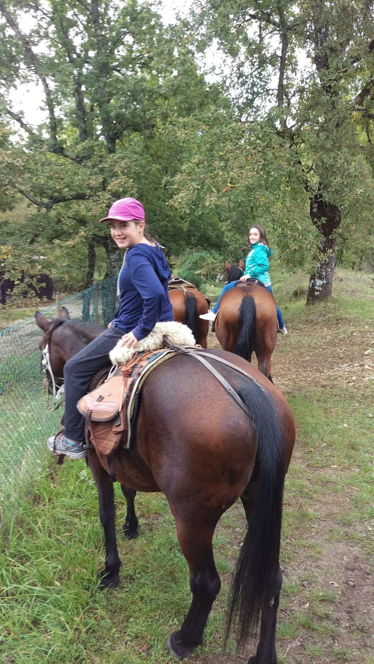 Horses, Branches and Hills  –  by Amelia and Annabelle