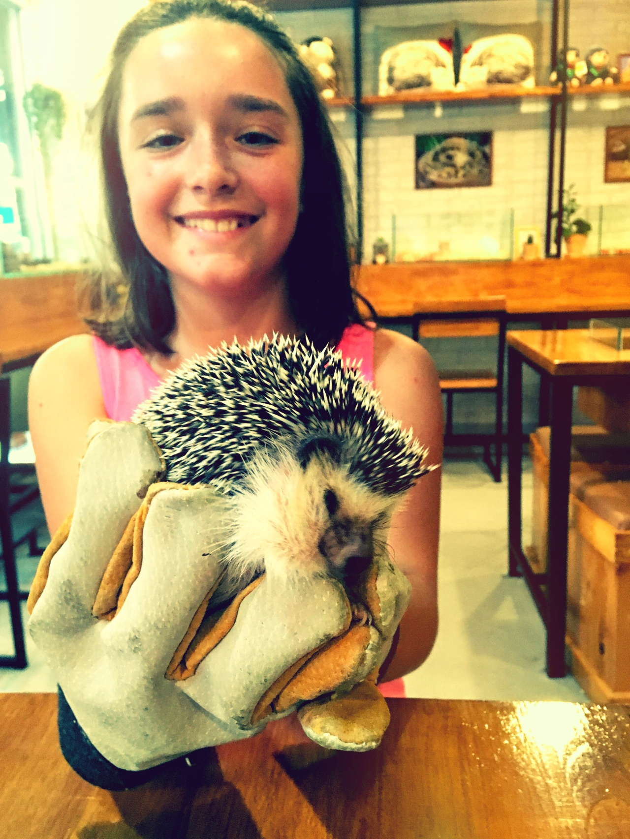 New Friends, Elephants and Hedgehogs in Chiang Mai, by Annabelle